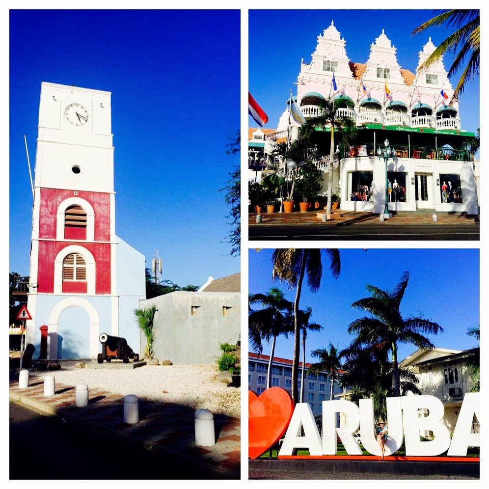 Joyfulperspectives Aruba (33)